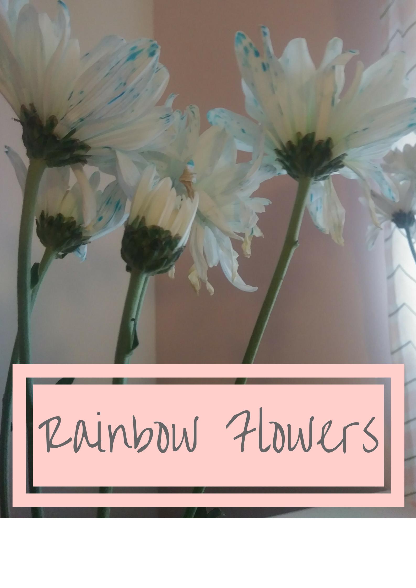 RainbowFlowers