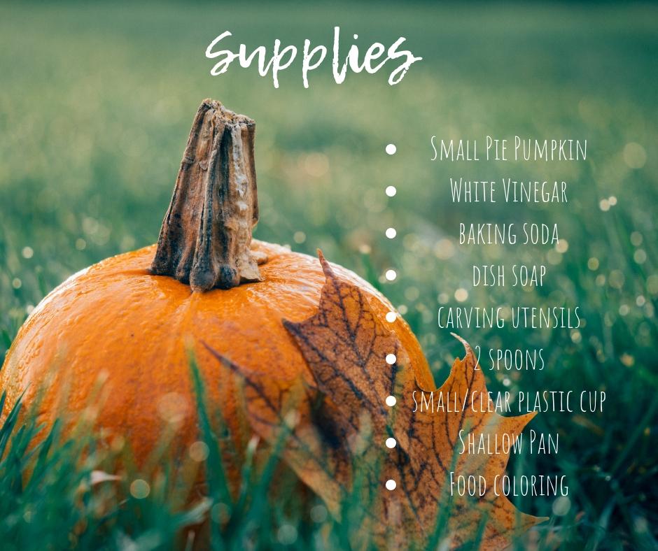 Supplies (1).jpg