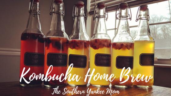 Kombucha Home Brew